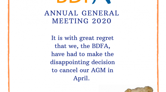 BDFA Cancel AGM